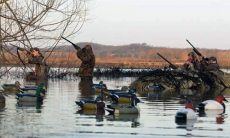 MIssouri Department of Conservation sets upcoming migratory game bird and waterfowl seasons
