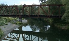 Video: Child thrown off railroad bridge