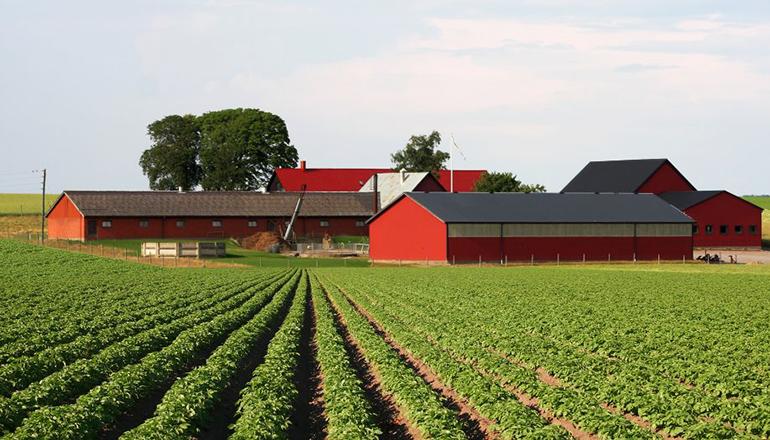 Farm News