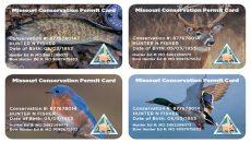 MDC Plastic permit cards