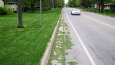 Grass clippings in street