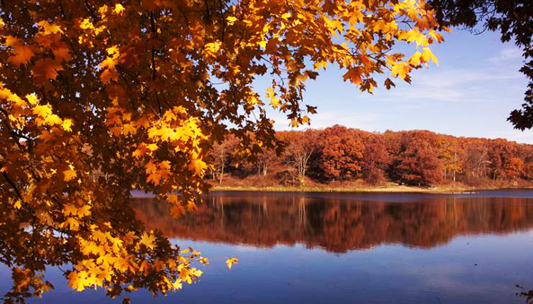 Fall Color at Crowder State Park