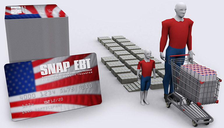 Food Stamps or SNAP