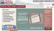 Ag Census