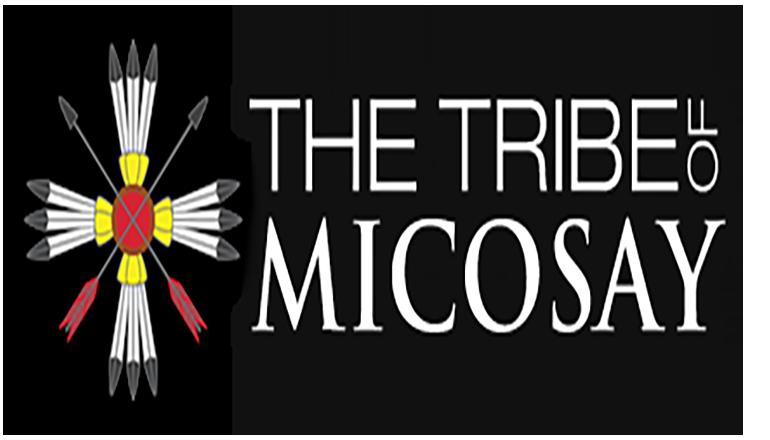 Mic-O-Say Logo
