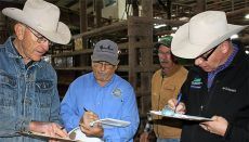 Farmers going over paperwork