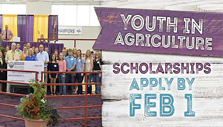 Missouri State Fair Youth in Agriculture Scholarships 2019