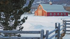 Farm in Winter