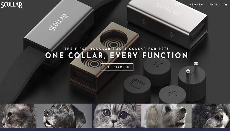 Scollar Website
