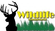 Wildlife Management