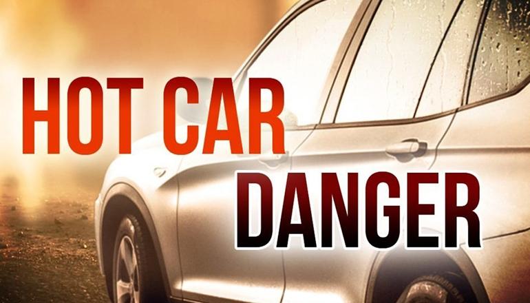 Hot Car Danger