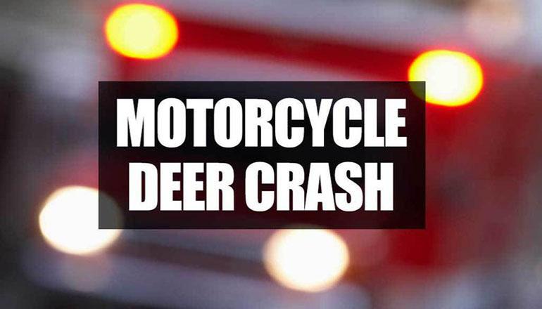 Motorcycle deer crash