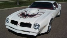 White 1976 Pontiac Firebird