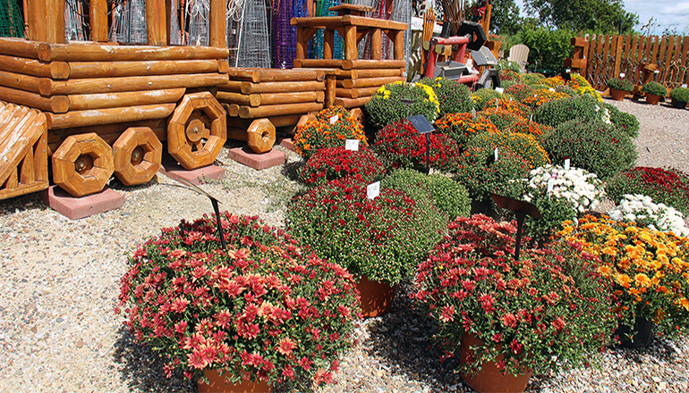 Dutch Garden Nursery of Edina