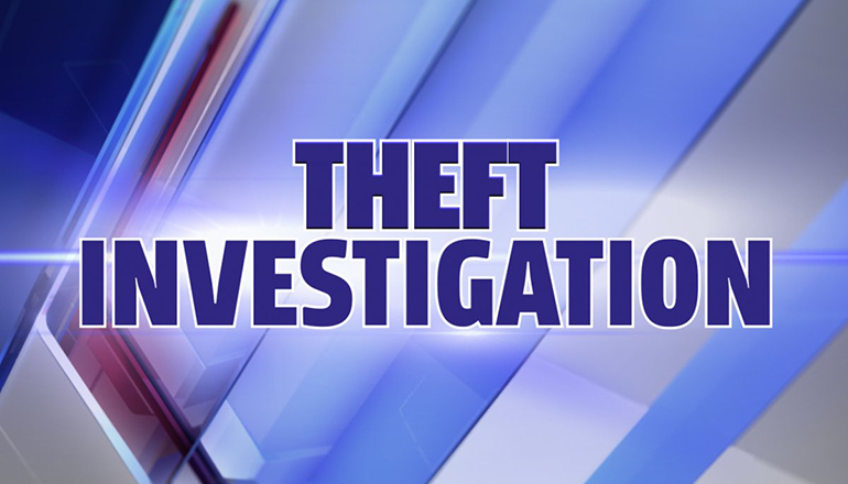 Theft Investigation