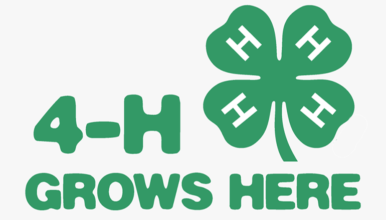 4-H Grows Here Graphic