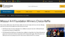4-H Winners Choice Raffle website