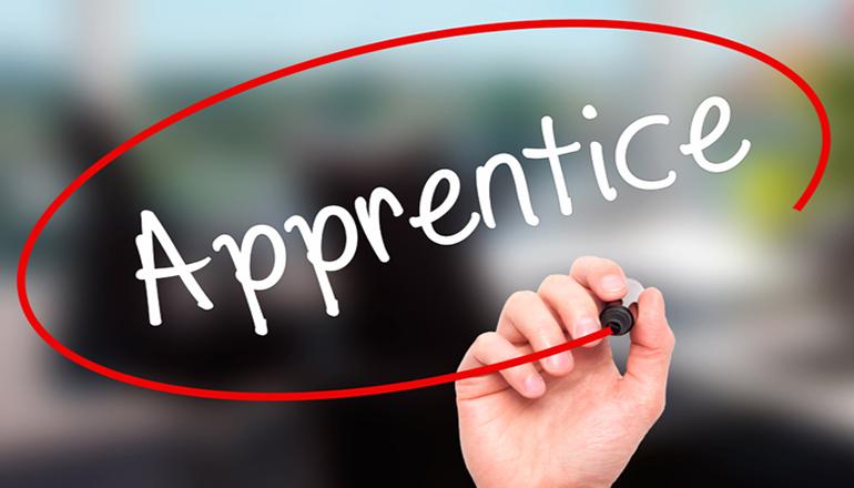 Apprentice graphic