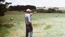 Farmer pointing at field of hay