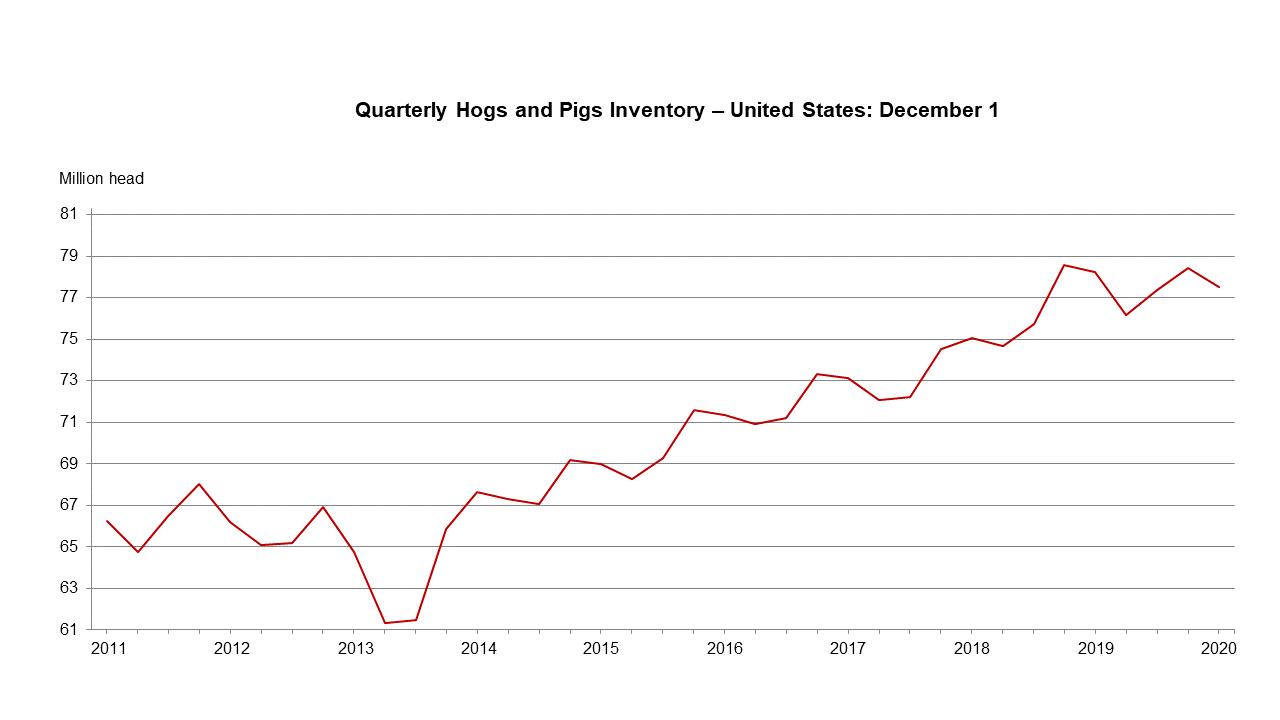 December 23, 2020 Hog Inventory in U.S.