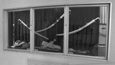 FBI Presidential Library crime scene photo