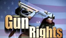 Gun RIghts graphic V2