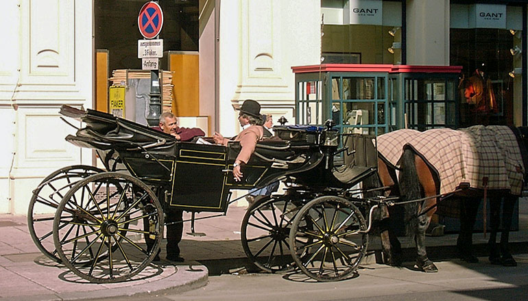 Man sitting in carriage pulled by horse