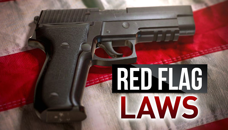 Red Flag Gun Laws Graphic