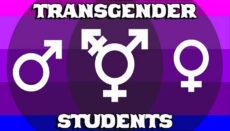 Transgender Students Graphic