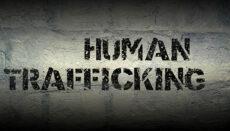 Human Trafficking Graphic
