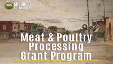 Meat and Poultry Processing Grants