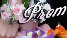 Prom graphic