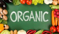 Organic News Graphic