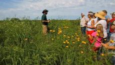 Prairie Day in Bethany