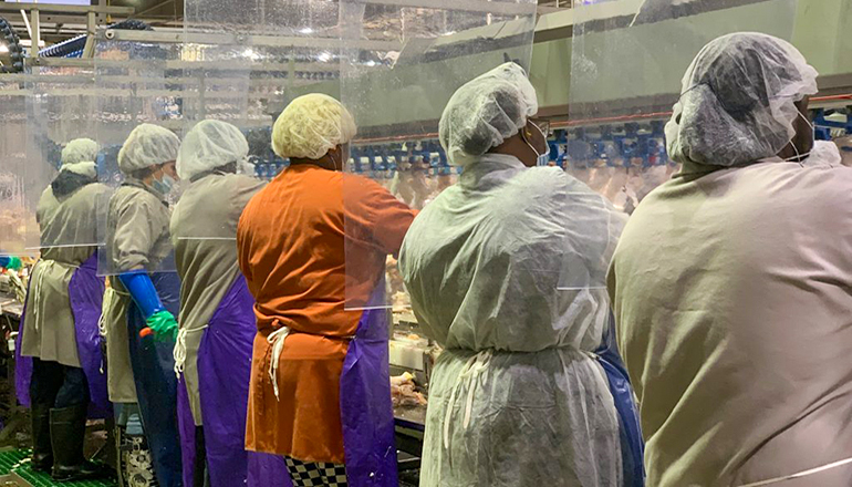 Workers on a meat packing line with workstation dividers at Tyson facility