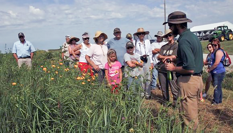 Dunn Ranch Prairie
