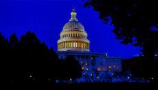 Senate Building at Night - Photo by Darren Halstead on UnSplash