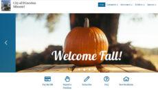 Princeton Missouri Website